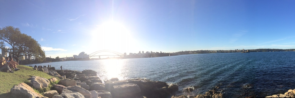 View of Sydney Opera House & Sydney Bridge from Mrs. Macquaries Point